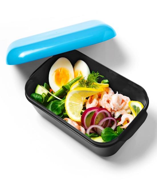 Frozzypack: Frischhaltedose mit Akku blau
